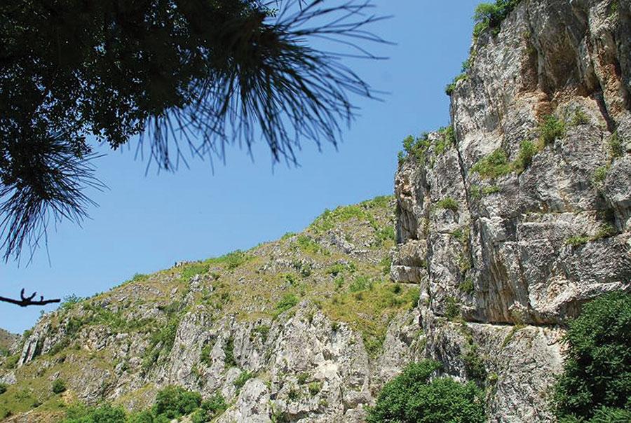 Sprijin pentru zonele montane defavorizate, una dintre finanțările puse la dispoziție de Uniunea Europeană