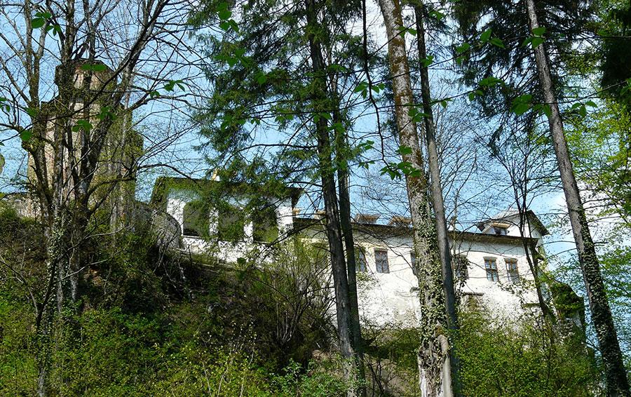 Turnurile zvelte veghează peste imensitatea verde a pădurilor la Tismana