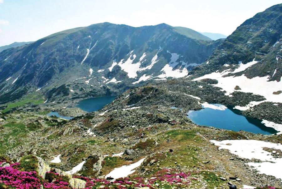 Pe munții Parâng, vara și iarna își dau mâna