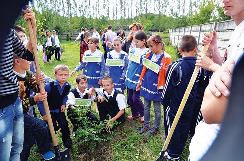 Elevii de la Mătăsari au plantat copaci la aceeaşi oră cu cei din alte ţări