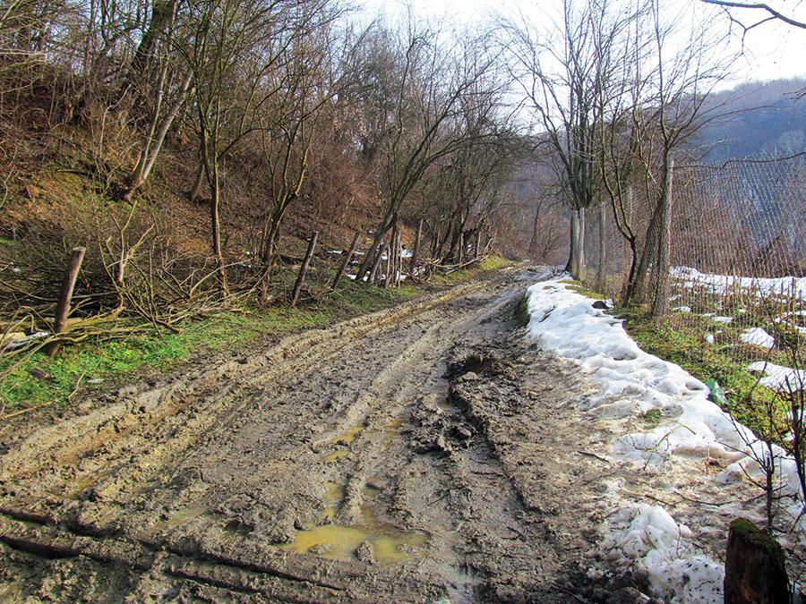 Drumuri din Godinești afectate de transporturile de lemn din pădure