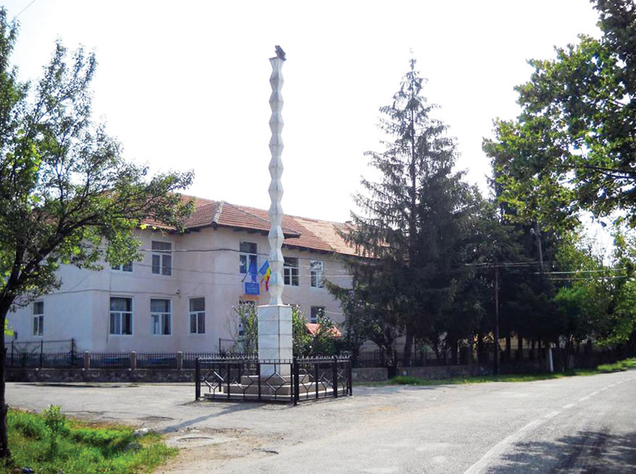 Școala Gimnazială Padeș, în plin scandal, din cauza păduchilor