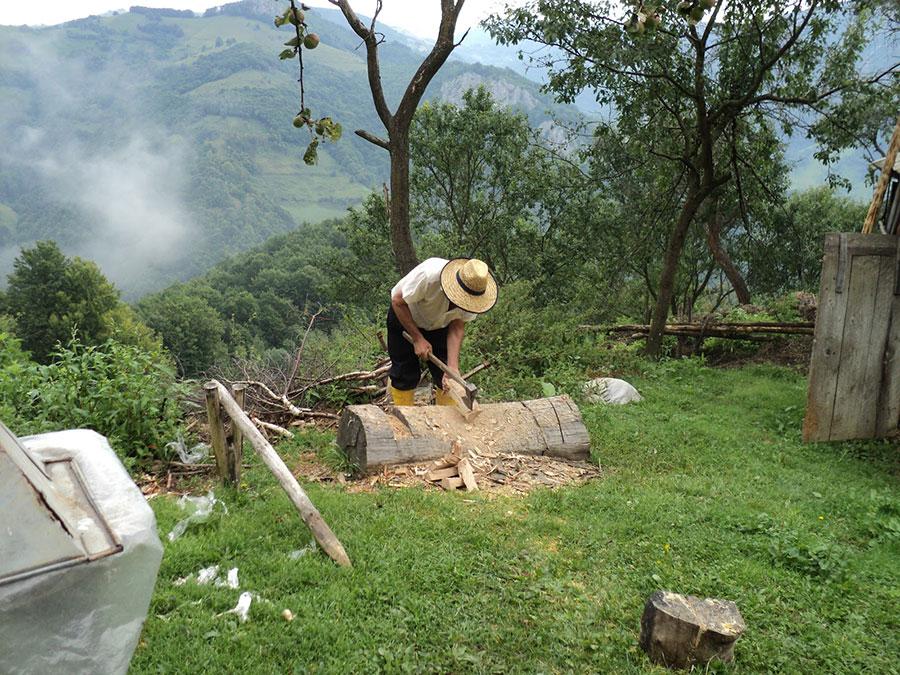 Pădurile din Baia de Fier au fost exploatate din vechime de locuitori