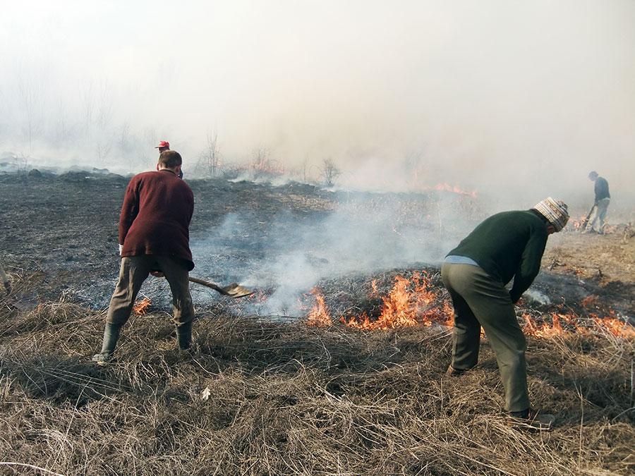 Igienizarea prin arderea resturilor vegetale, penalizată cu tăierea plăților UE