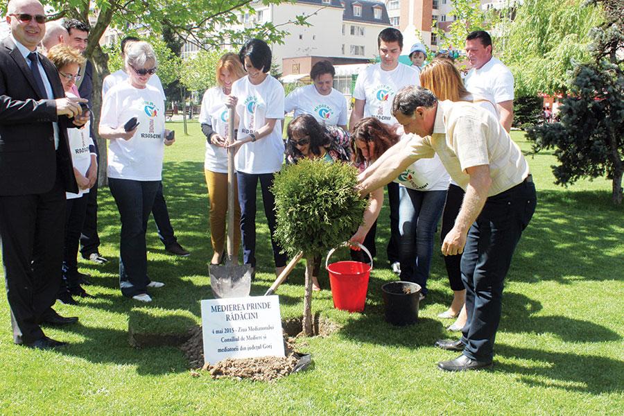 În săptămâna medierii, Consiliul de Mediere a inițiat plantarea, cu ajutorul mediatorilor, a 42 de copaci în 42 de orașe reședință de județ ale României