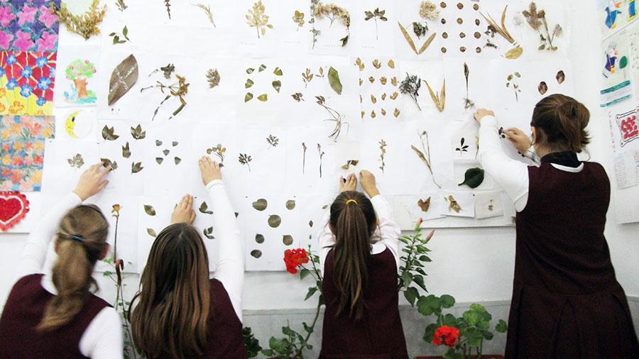 """Iată cum ar arăta un """"herbariu"""" contemporan într-o unitate școlară"""