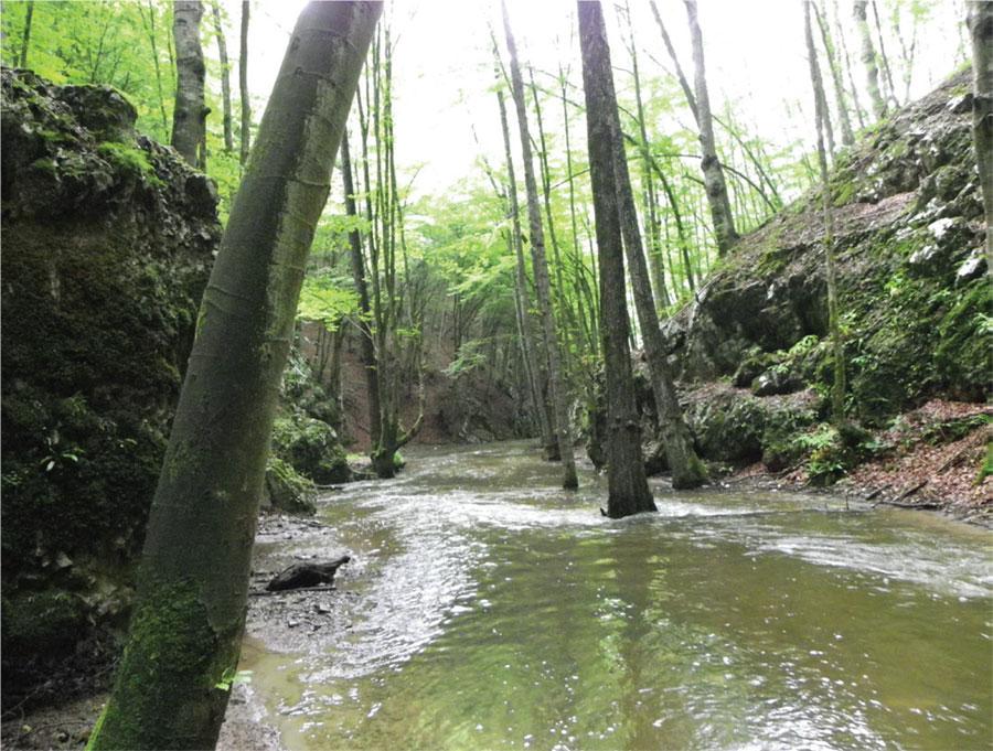 Bulba, râul mângâiat de soare şi înnobilat de legenede