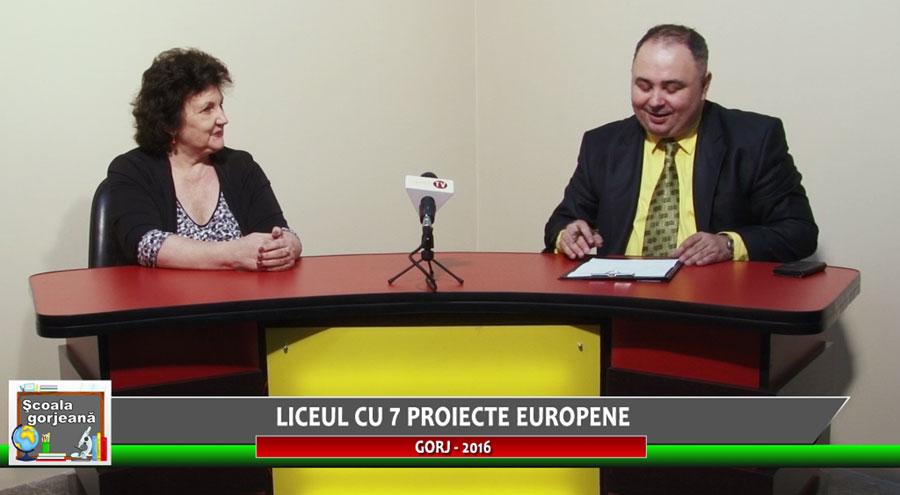 Liceul Tehnologic Baia de Fier derulează proiecte europene din 2009