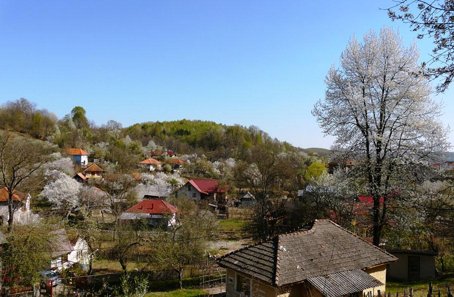 A coborât anotimpul reînvierii în satele Gorjului